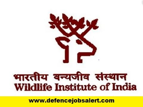 WII Recruitment