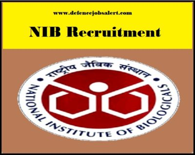 NIB Recruitment