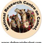 NRC Camel Recruitment