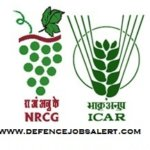 National Research Centre for Grapes Recruitment 2021 - Upcoming Jobs
