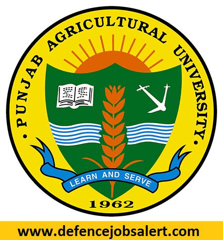 PAU Recruitment