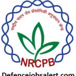 NRCPB Recruitment