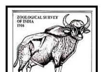 ZSI Recruitment