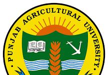 Punjab Agricultural University Recruitmen